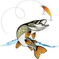 Рыбалка, рыболовные снасти